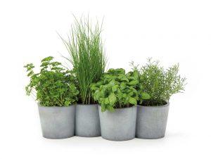 POTPOT_herbs-res